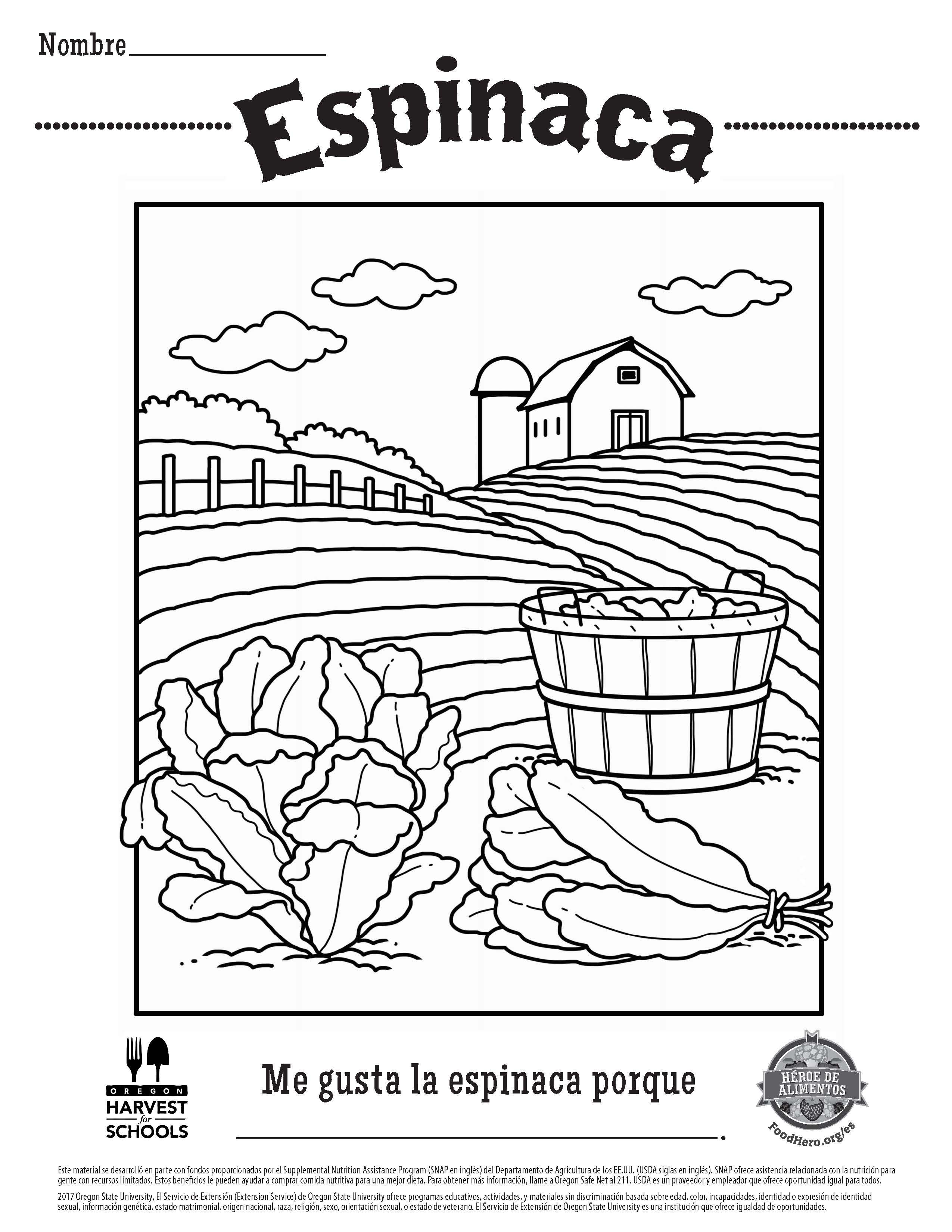 Spinach in Spanish Food Hero Free Printable Childrens Coloring