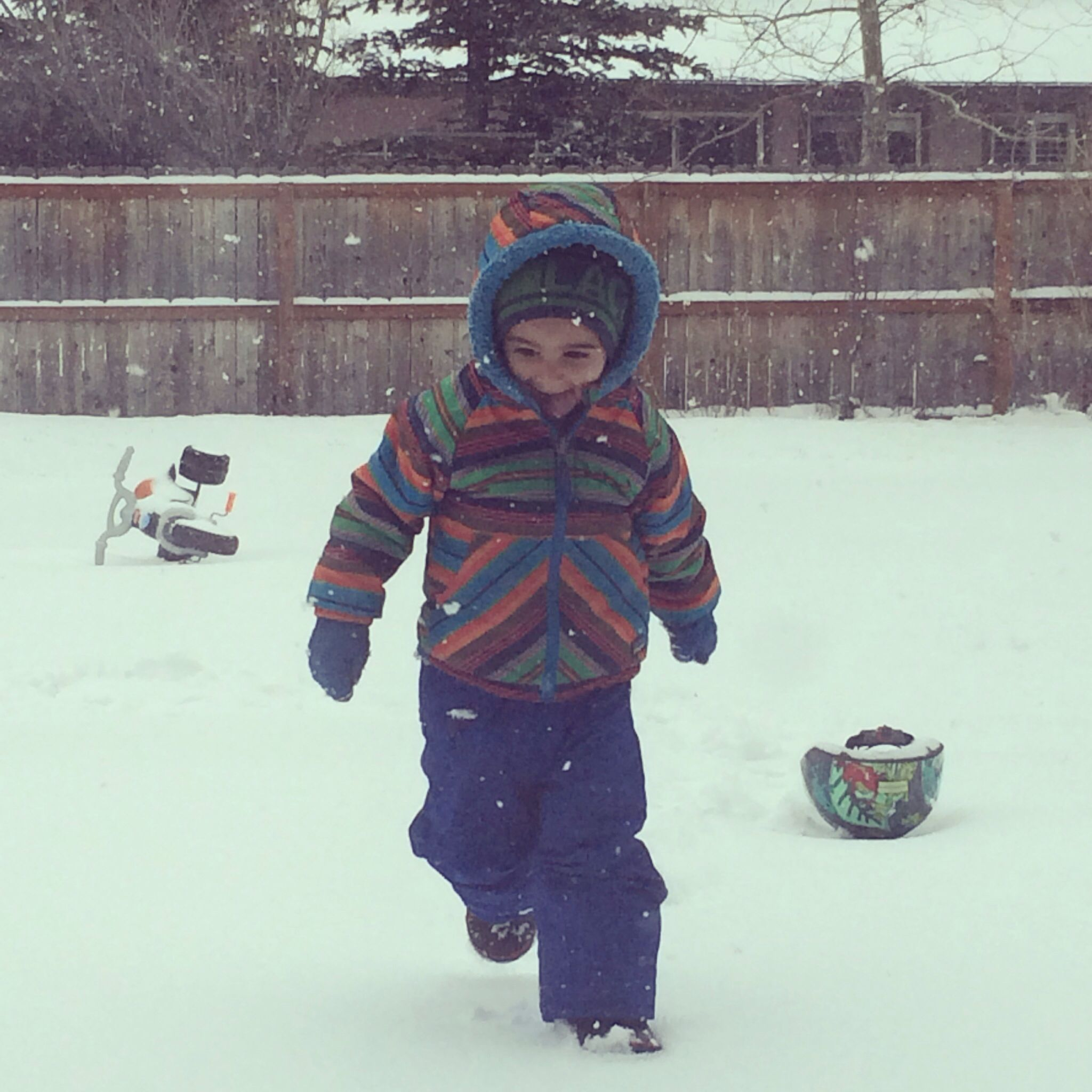 Adam and the snow