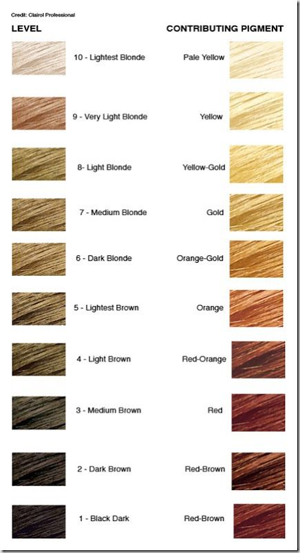 Hair color level chart also cos life in pinterest rh