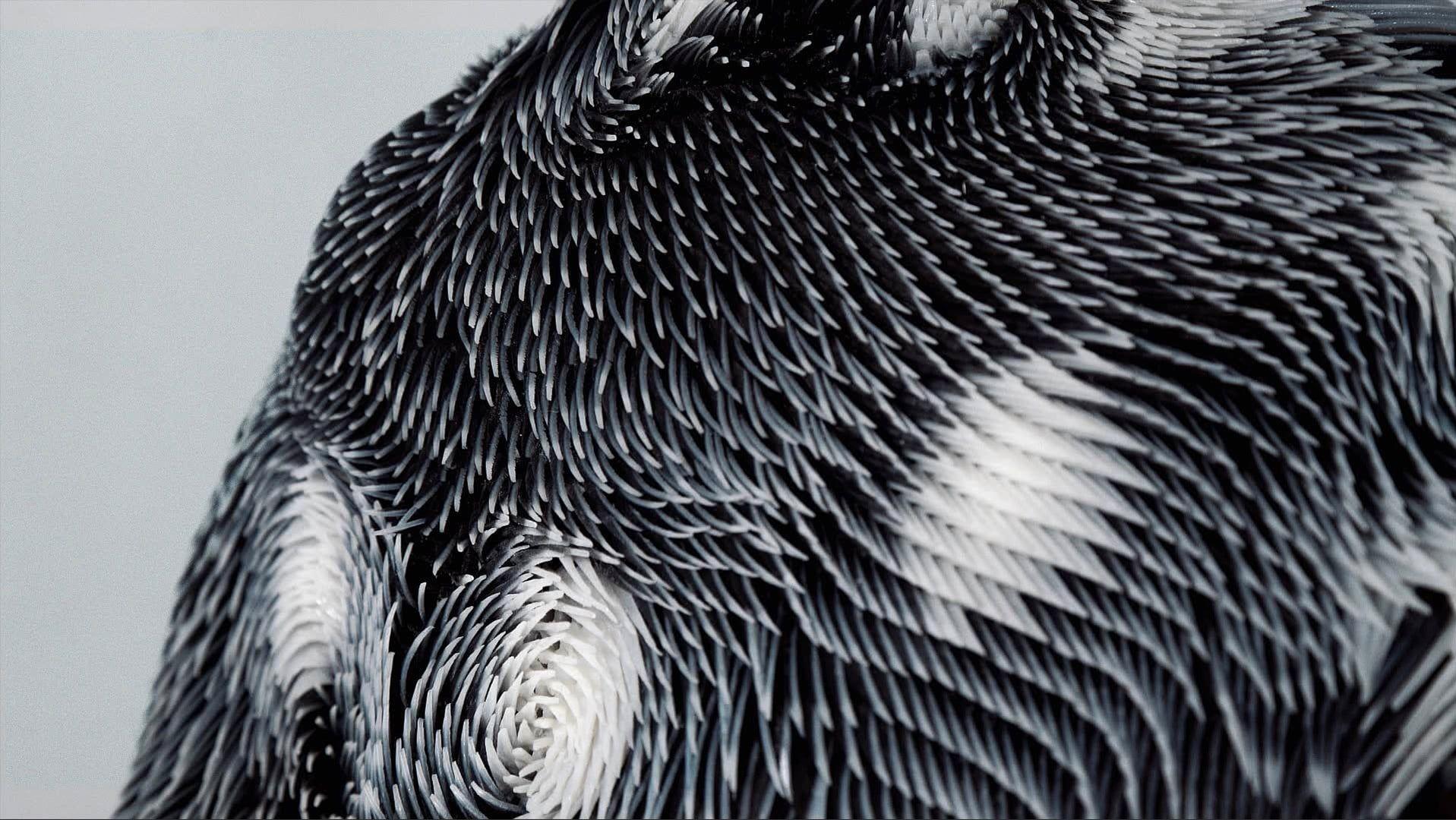 Caress of the Gaze Dankzij architect en interaction designer Behnaz Farahi zullen mannen in de toekomst wel twee keer nadenken voordat ze 'ongemerkt' naar iemands borsten beginnen te staren. Haar nieuwe 3D-geprinte topje voor vrouwen laat namelijk precies zien wanneer iemand naar het kledingstuk staart, door abrupt van vorm te veranderen.   Voor Caress of the Gaze bracht Farahi een camera met gezichtsherkenningssoftware samen met een topje van 3D-geprinte spikes, die beginnen te bewegen…