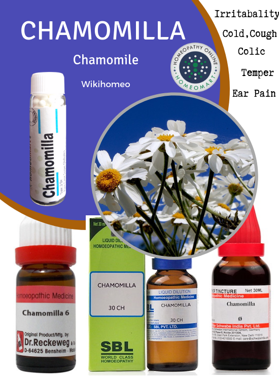 Compendious on Chamomilla: Indications, Benefits, Side effects
