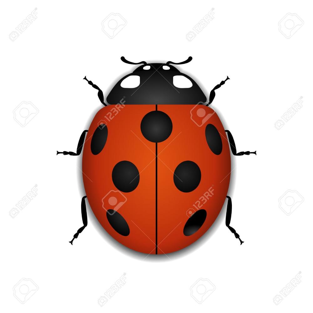 Stock Vector Small icons, Ladybug, Banner printing