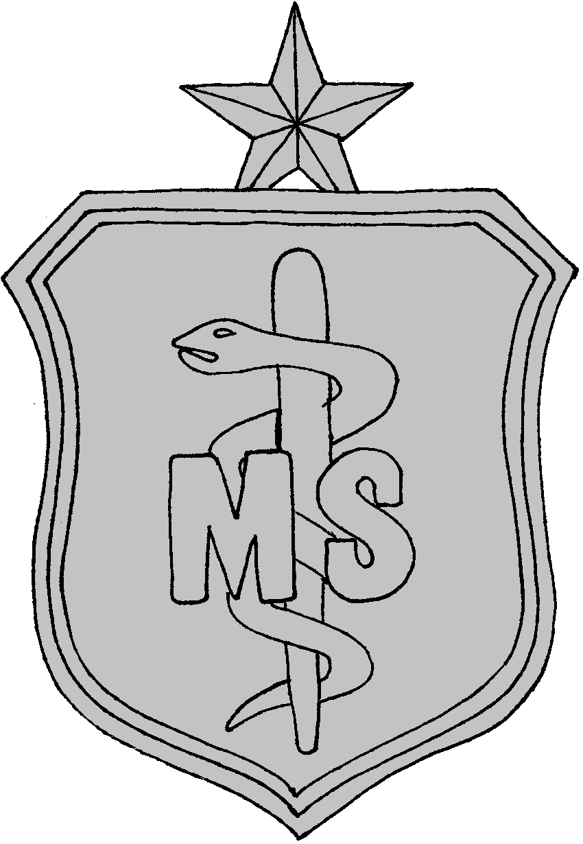 Air Force Medical Services Corps Badge 2 Medical Services Air Force Badge