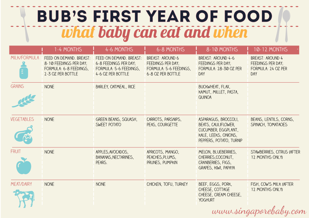Baby Food Chart. What Baby Can Eat, When. First 12 Months