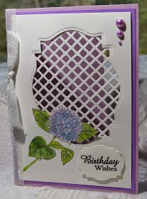 Shona's Stamping Stage: HYDRANGEA BIRTHDAY