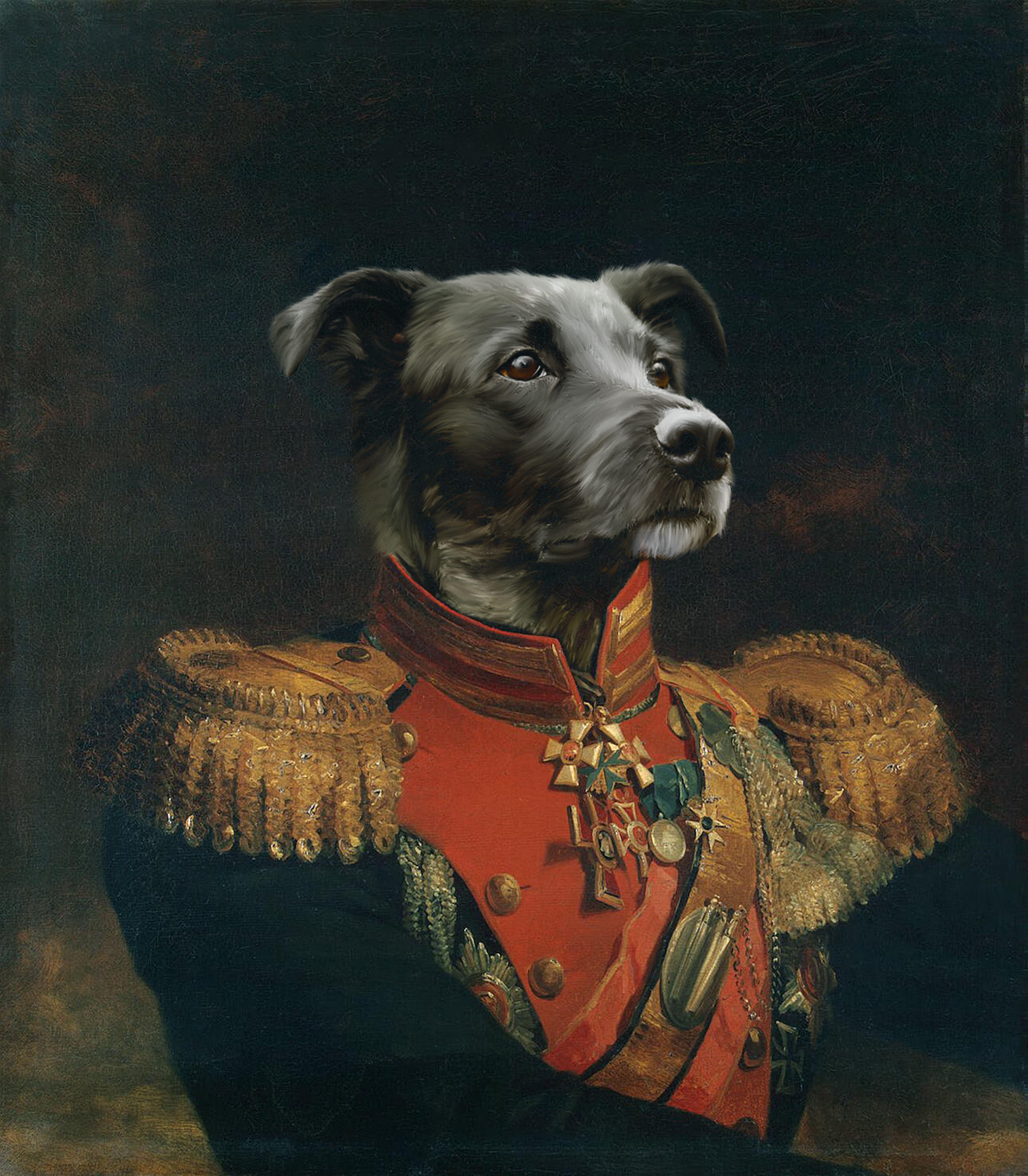 Custom Pet Portrait from Photo, Regal Pet, Royal Pet