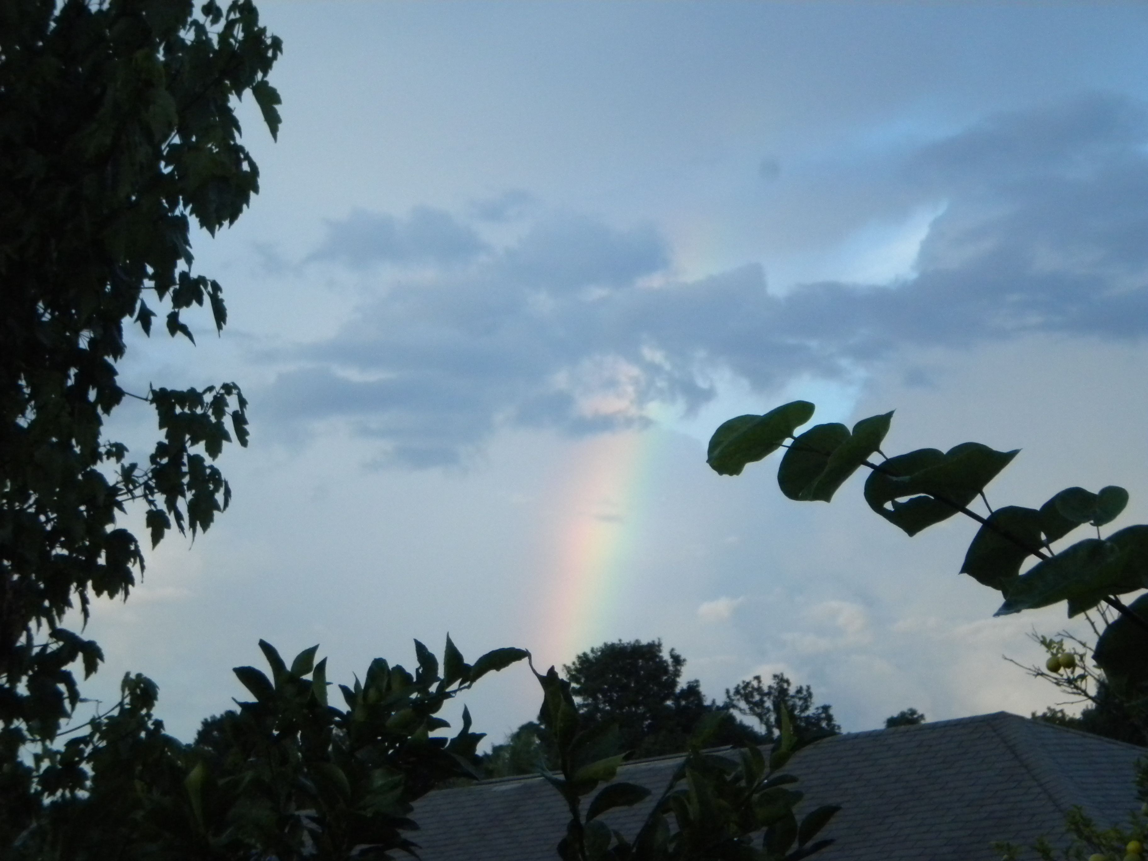 A rainbow DOES have a pot of gold on the end....I found it ...