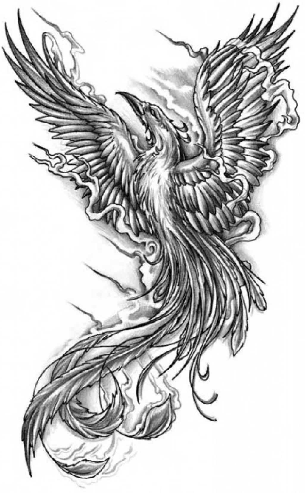 77e8964d2 grey ink phoenix tattoo design cool grey ink phoenix tattoo design ...