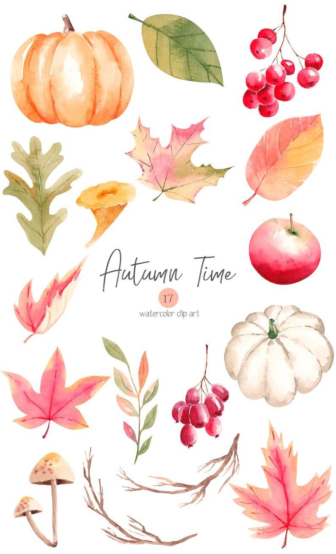 Watercolor Autumn Clipart, Fall Clipart, Pumpkin, Fall Leaves, Apple, Thanksgiving Clipart PNG 44