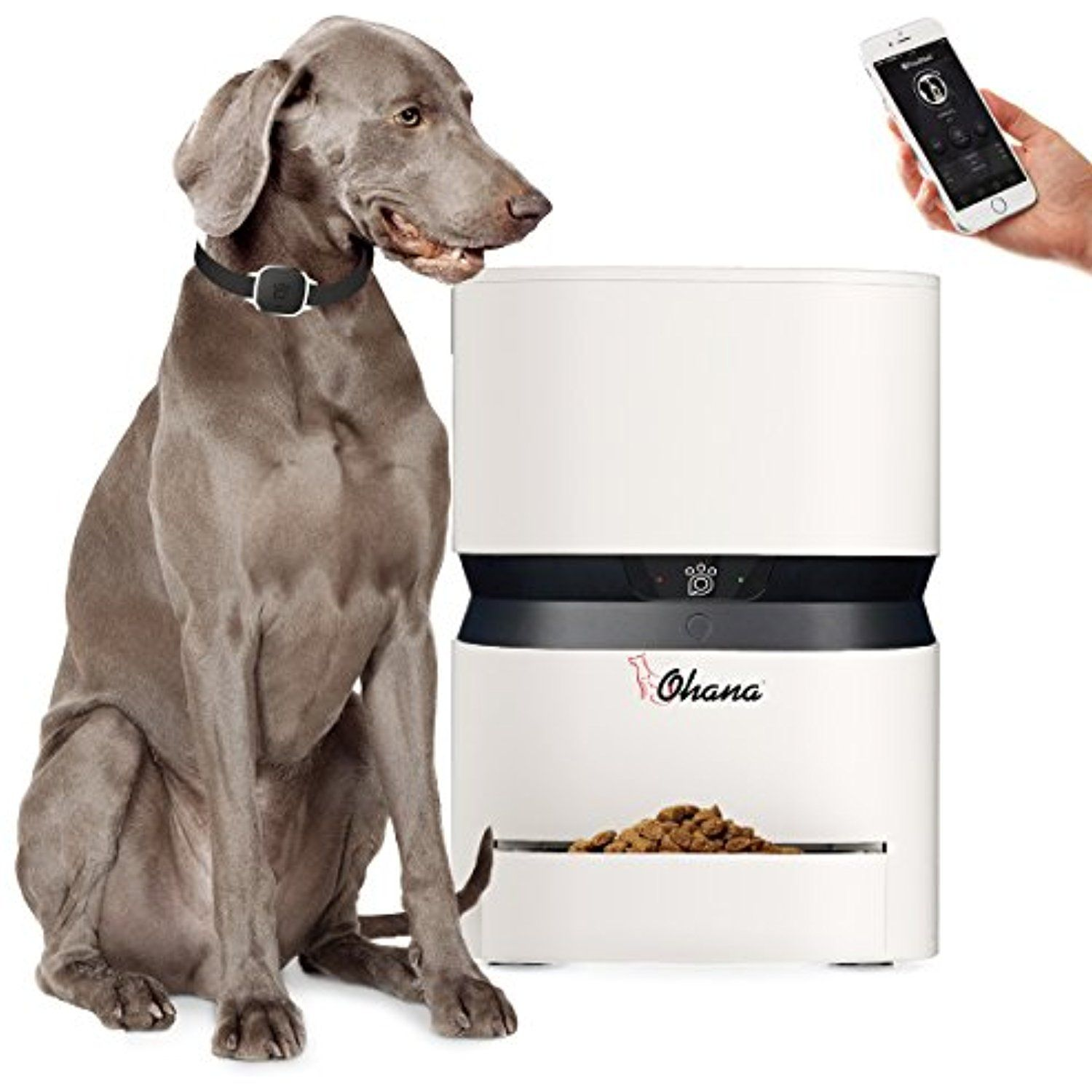 8l Smartfeeder Ohana Automatic Food Dispenser For Cats And Dogs