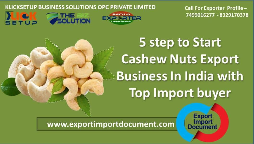 5 step to Start Cashew Nuts Export Business In India with
