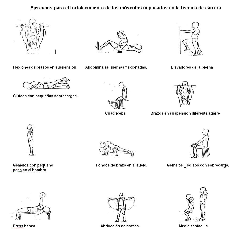 Ejercicios para el fortalecimiento de los músculos ...