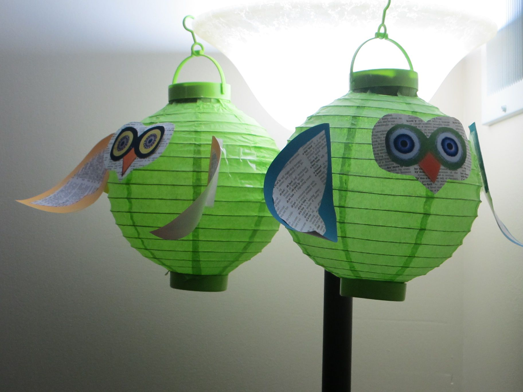 Pin On Owl Classroom Theme