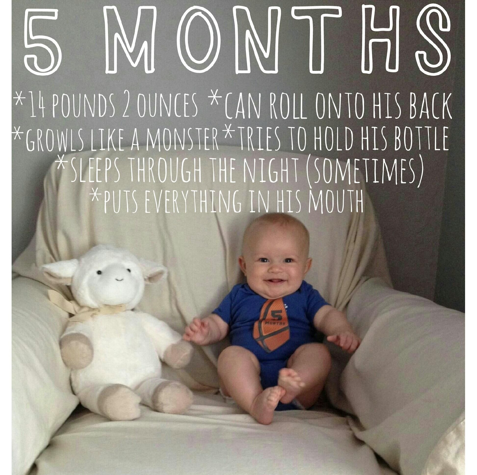 Baby Monthly Picture 5 Months Old