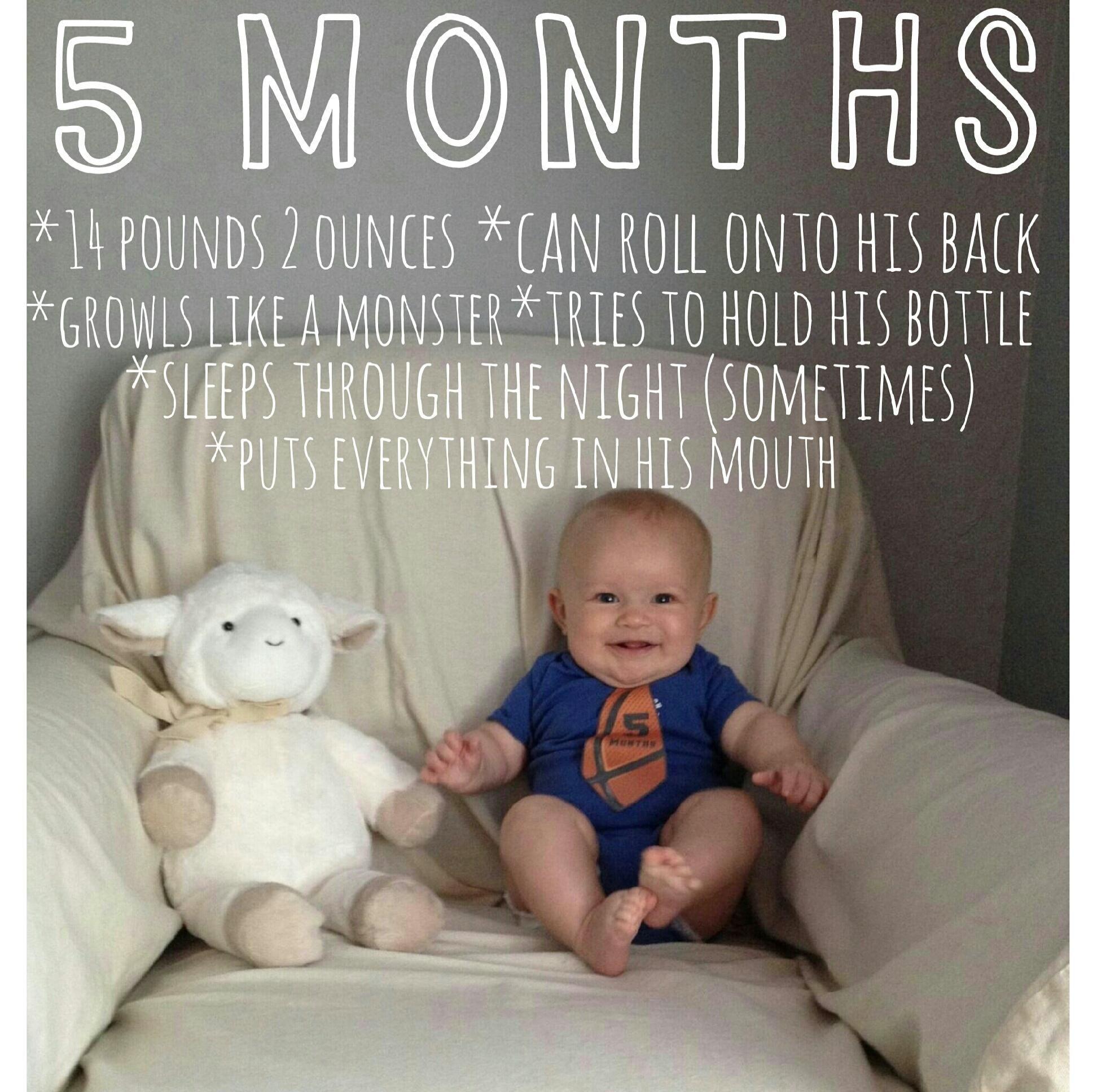 Baby monthly picture 5 months old Jaxen Robert