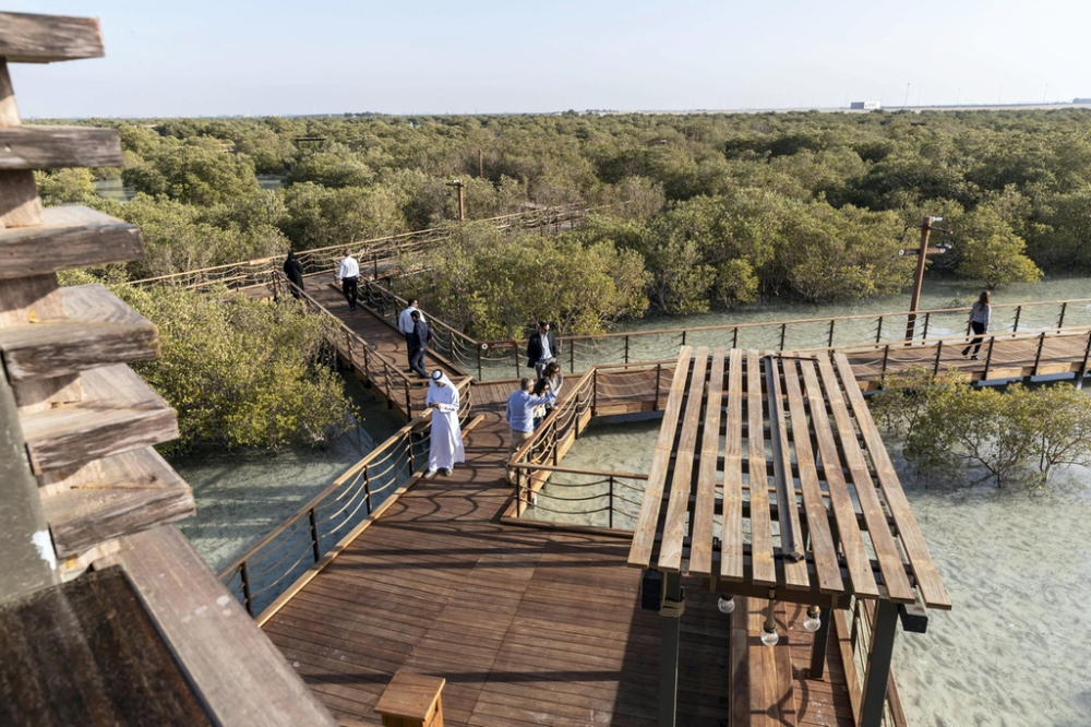 Jubail Mangrove Park Everything You Need To Know From Parking To Location The National In 2021 Mangrove Park Abu Dhabi International Airport