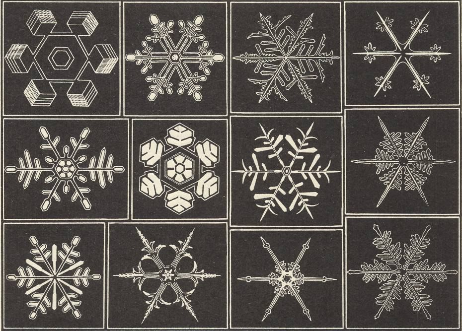 Figure above :  Some examples of snow crystals.  (In WOLTERECK, 1932, After HELLMANN, 1893.)