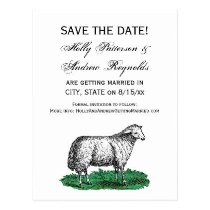 Vintage sheep ewe farm animals drawing c postcard married gifts vintage sheep ewe farm animals drawing c postcard married gifts wedding anniversary marriage party diy stopboris Images