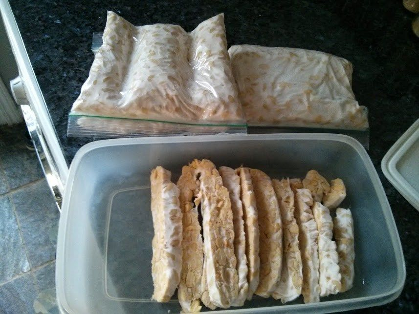 How To Make Your Own Tempeh A K A Fungus Growing 101 Earthlychow Com Food Tempeh Whole Food Recipes