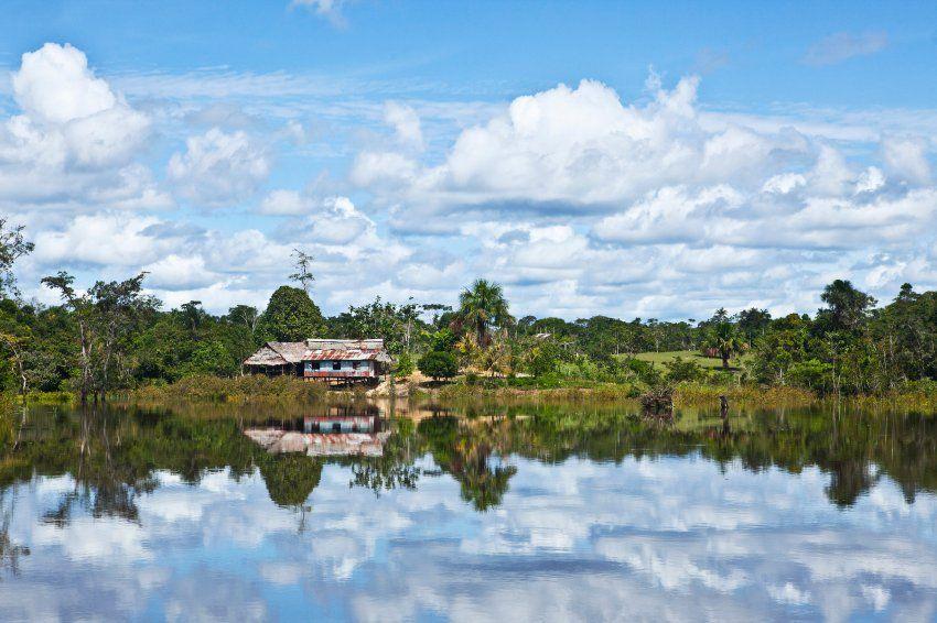 Amazonas Abenteuer In Peru Dschungelcamp In Echt Spiegel