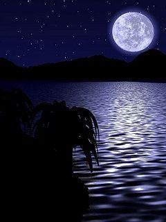Beautiful Nature Night Scenery Below The Moon Free Cell Phone Night Scenery Beautiful Images Nature Beautiful Nature