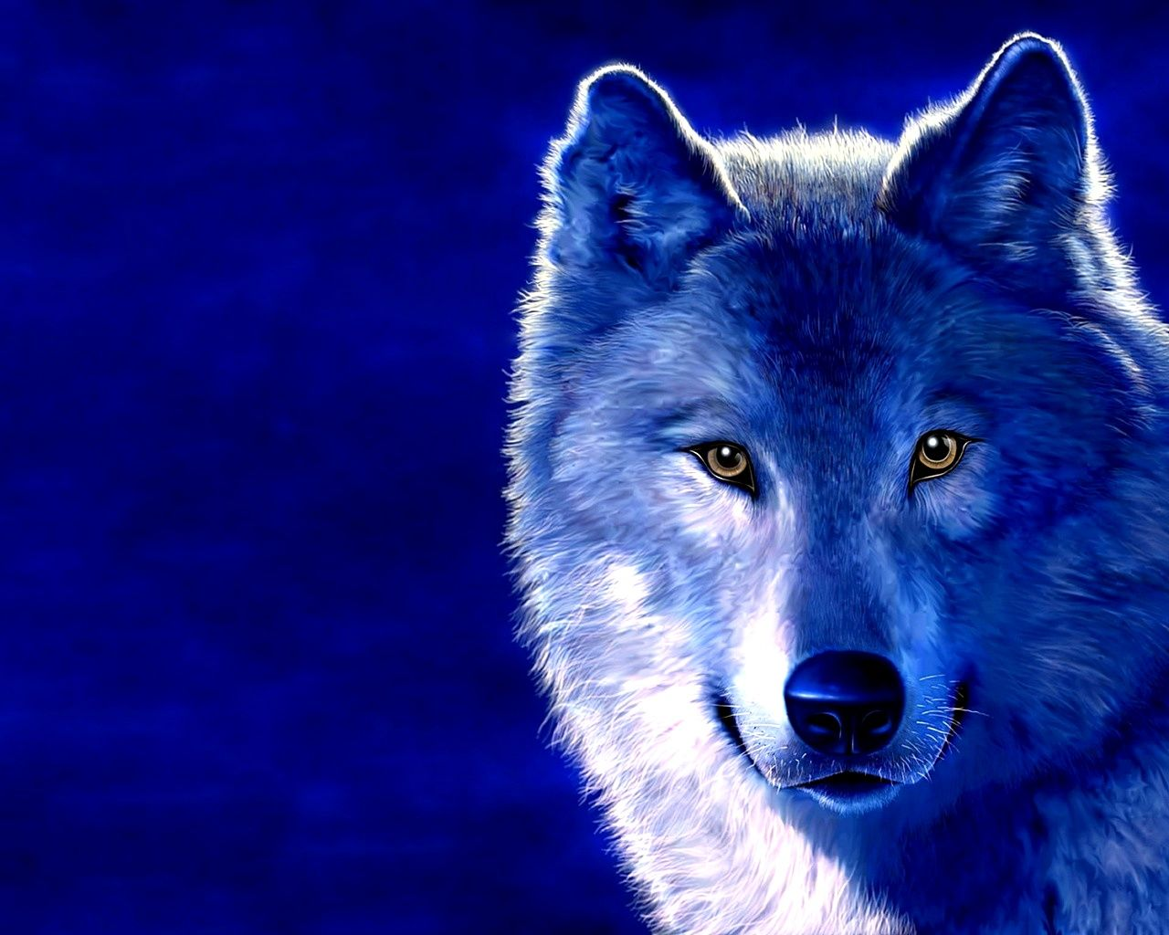 Hd Desktop Wallpapers Free Online Desktop Wallpapers Wolf Wallpaper Wolf Photos Animals