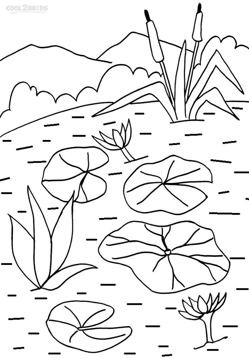 Printable Lily Pad Coloring Pages For Kids Cool2bkids Coloring Pages Lilies Drawing Flower Coloring Pages