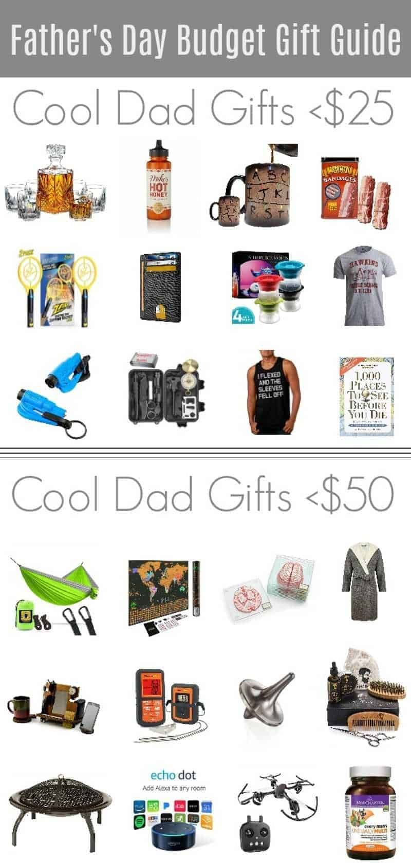 Dad Christmas Gifts 2020 24 Cheap and Unique Father's Day Gifts of 2020 (Sorry, Cool Dads