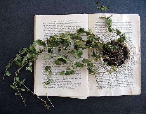 La naturaleza de un libro