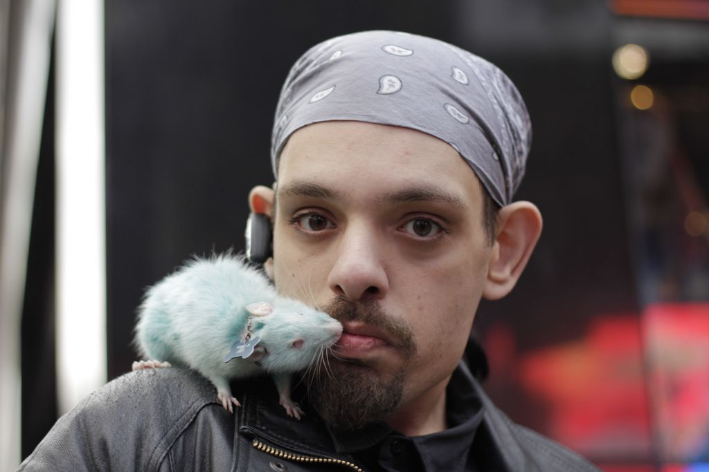 Man Kissing Blue Rat Men Kissing Losing A Pet Man