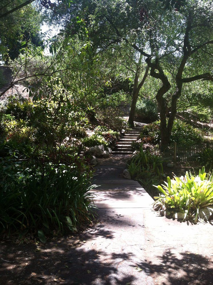 Photos For Mildred E Mathias Botanical Garden   Yelp