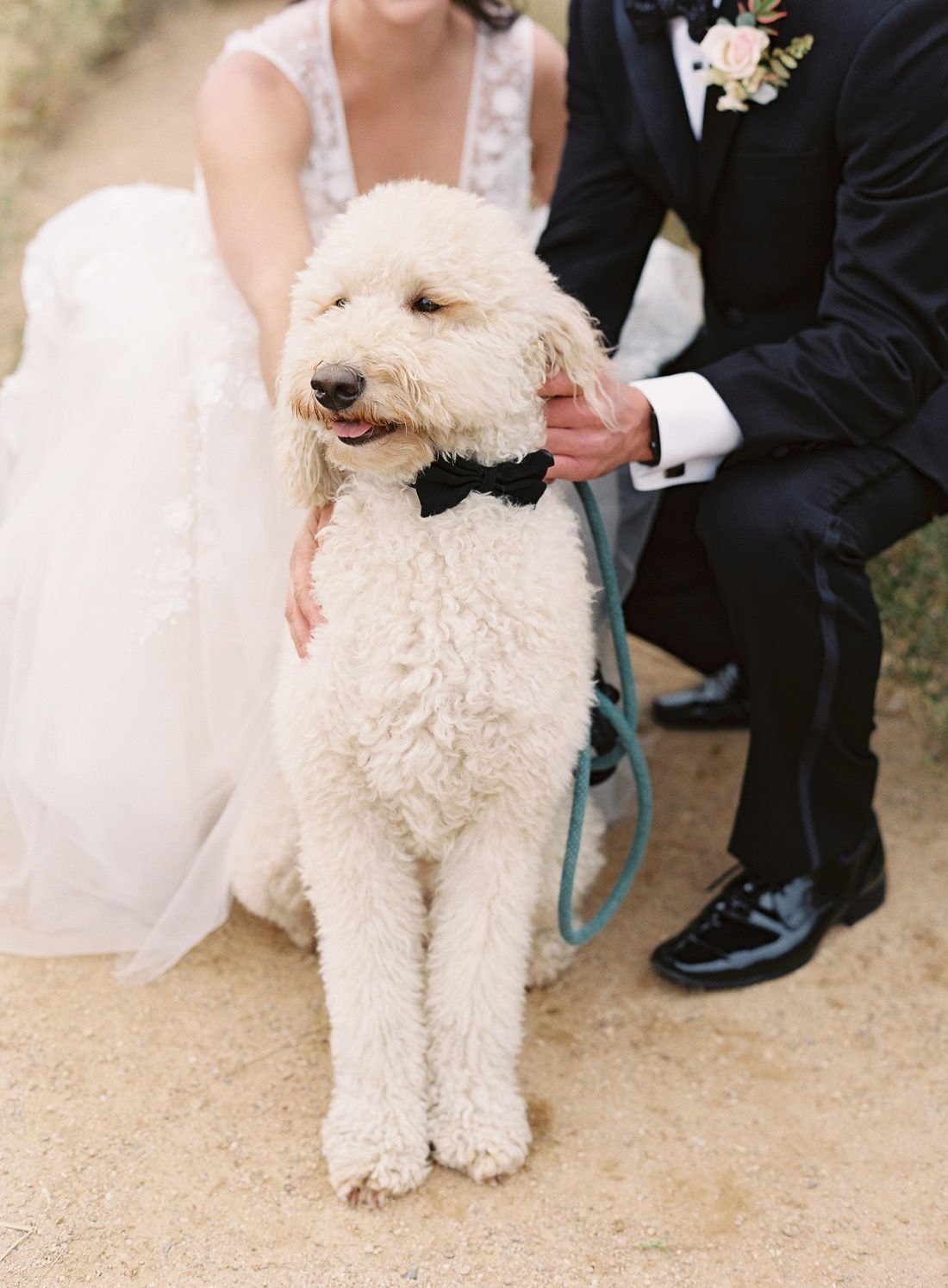 This Mountainside Colorado Wedding Was Inspired By New York City In 2020 Martha Weddings Colorado Wedding Dog Wedding Pictures