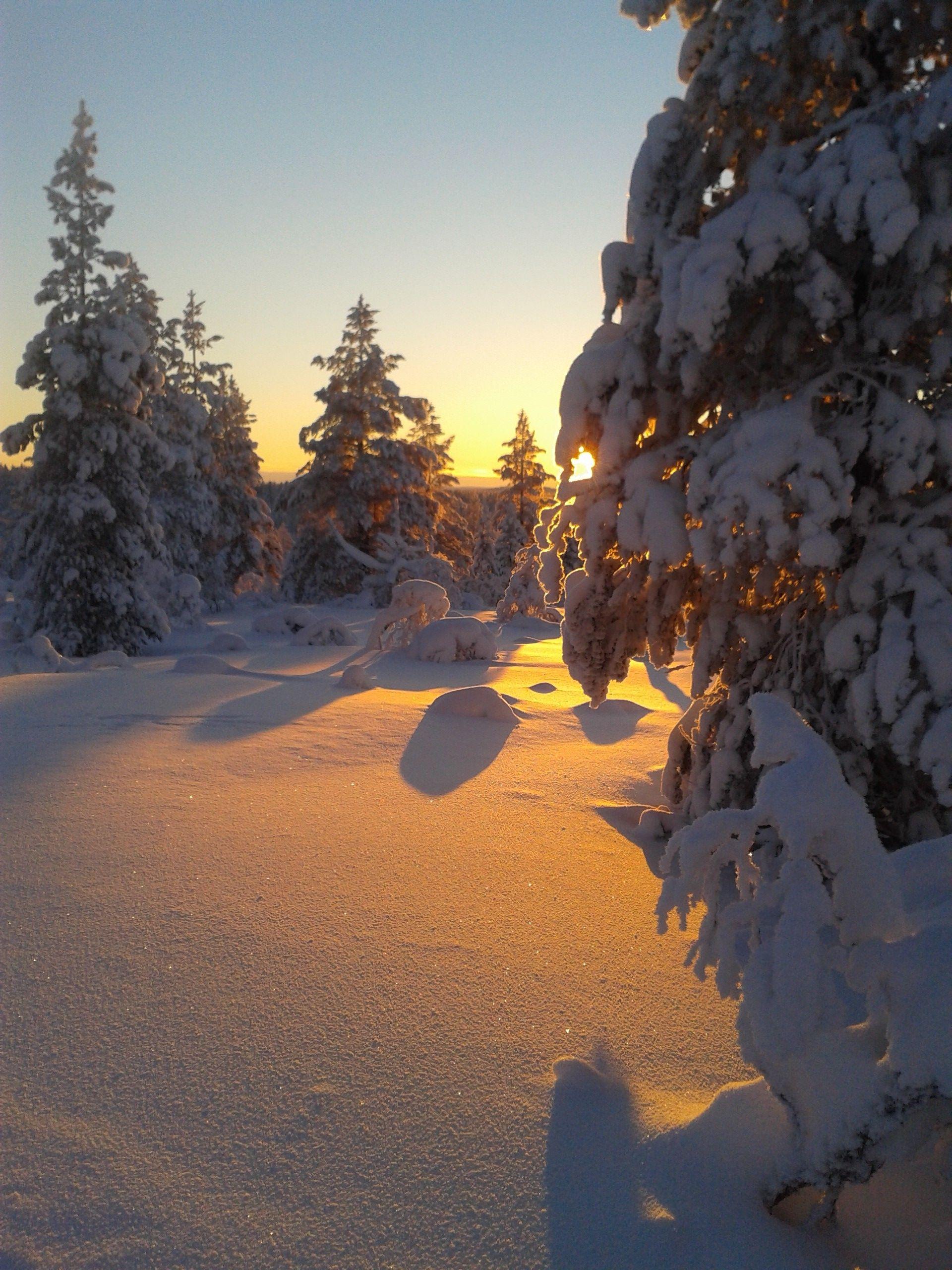 #snow #winter and #sunset at #kiilopaa #lapland #finland. Photo by Terhi Sirviö