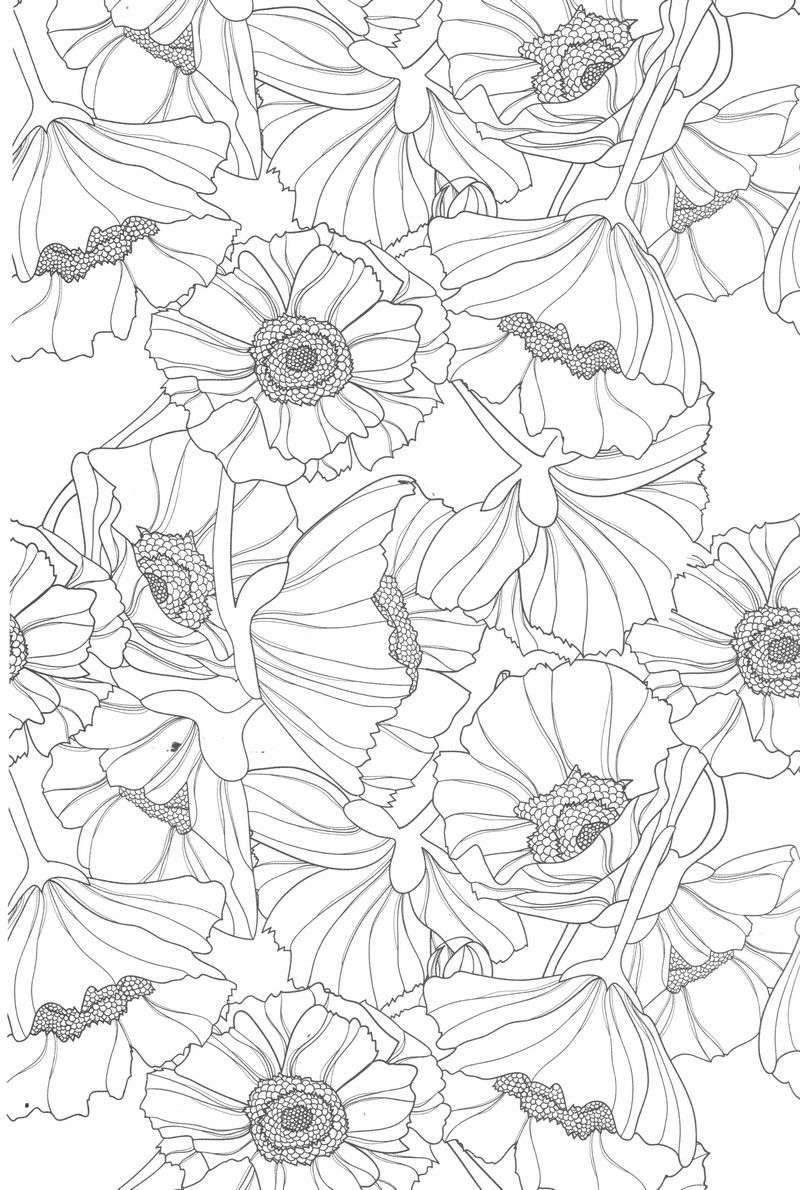 Flower doodle coloring pages colouring adult detailed advanced