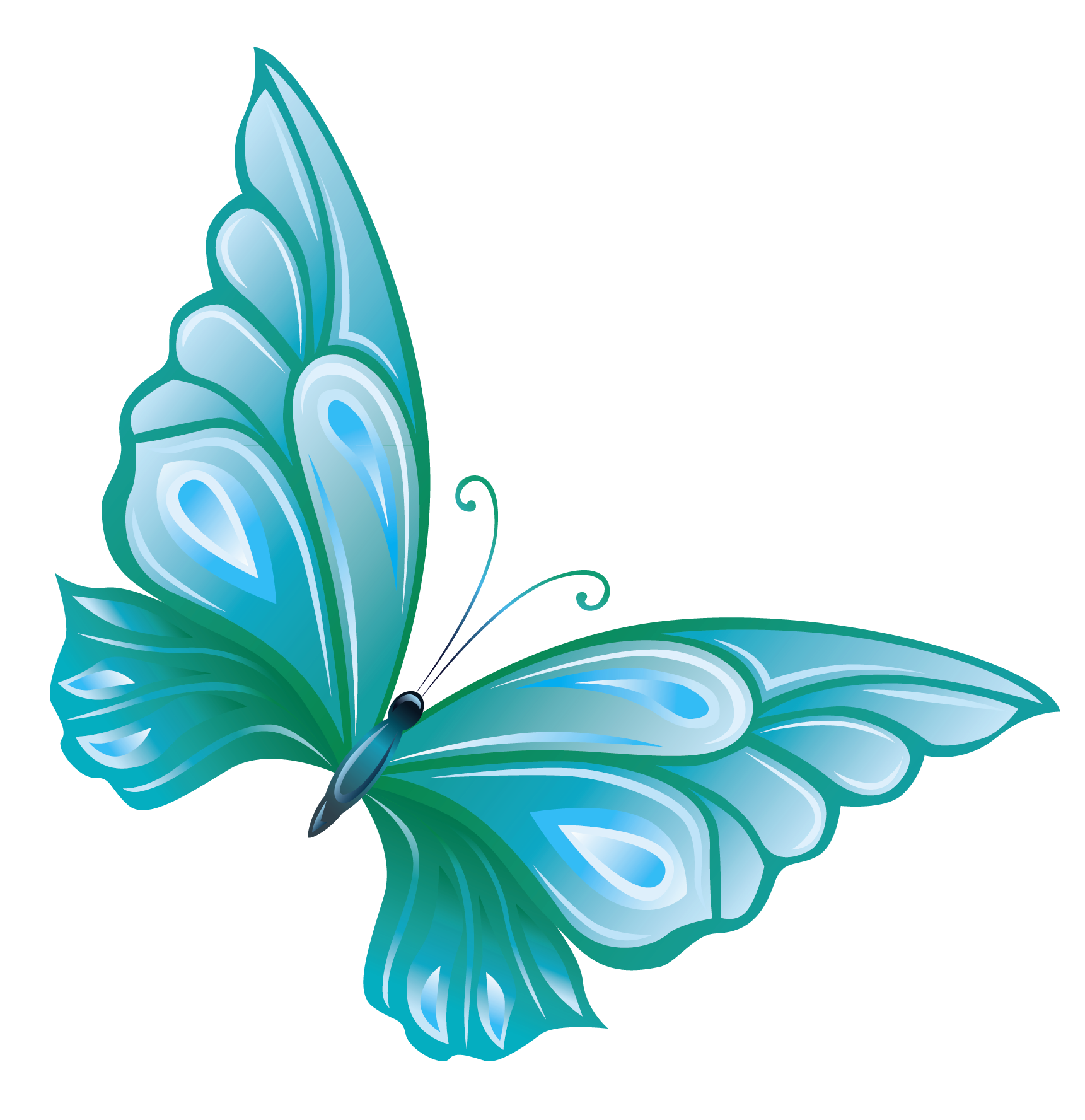 hight resolution of light blue butterfly clipart clipart panda free clipart images