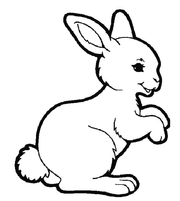 Rabbit Coloring Pages Animals Rabbit Coloring Pages Animals Mural