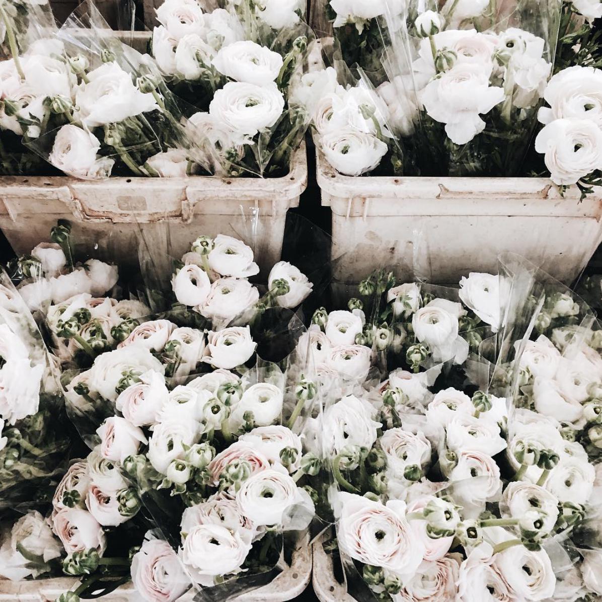 Flowers slower shop flower bouquets f l u e r pinterest flower