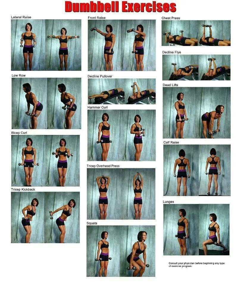 Dumbbell exercises [ SkinnyFoxDetox.com ] #strength #skinny #health #dumbbellexercises Dumbbell exercises [ SkinnyFoxDetox.com ] #strength #skinny #health #dumbbellexercises