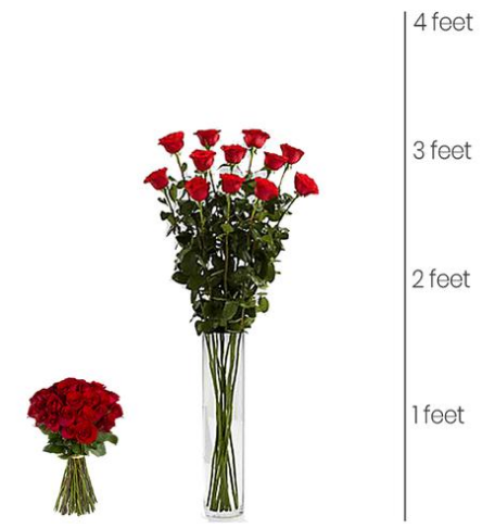 Pin By Best Roses Shop On Super Tall Roses Red Roses Rose Best Roses