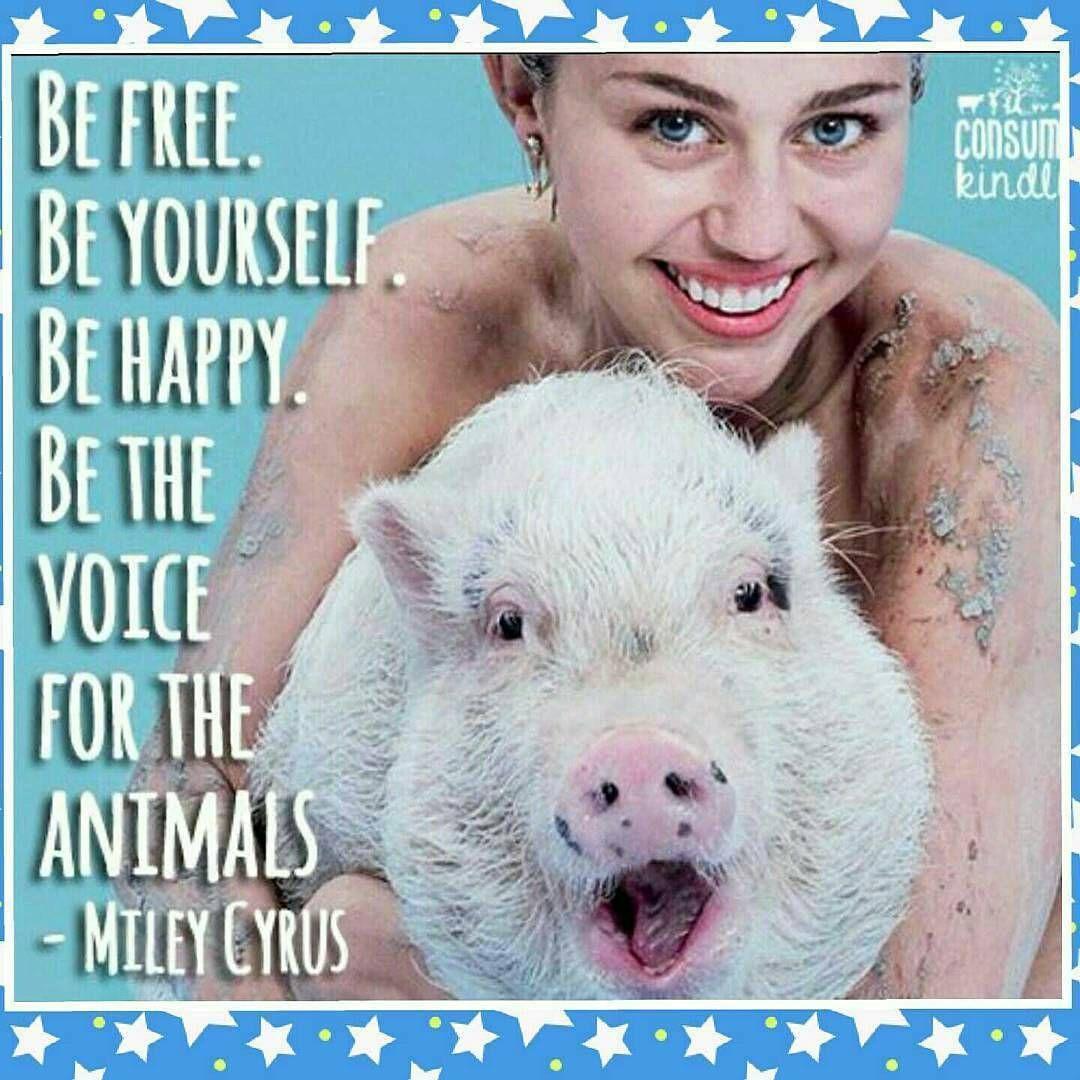 Instagram Vegan Quotes Animals Miley Cyrus