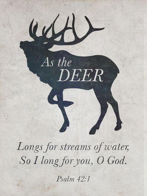 It's an elk but close enough :P