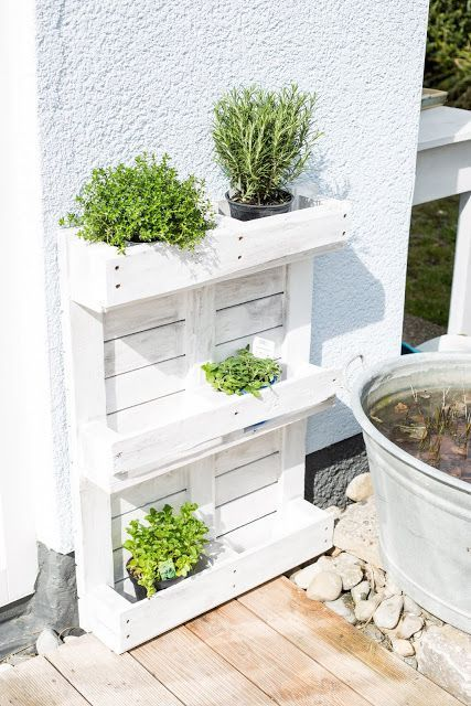 Photo of Upcycling or herb garden from a pallet