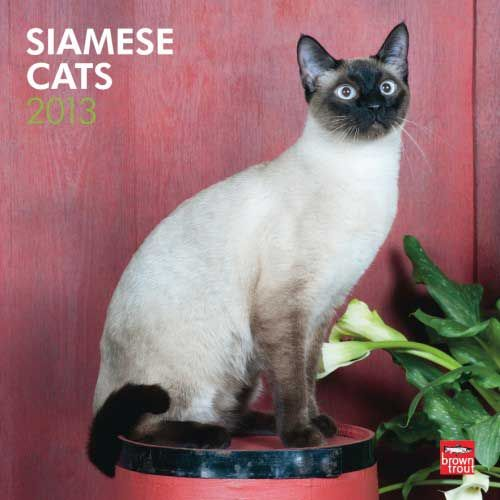 Siamese Cats Calendar 2013 $14.99