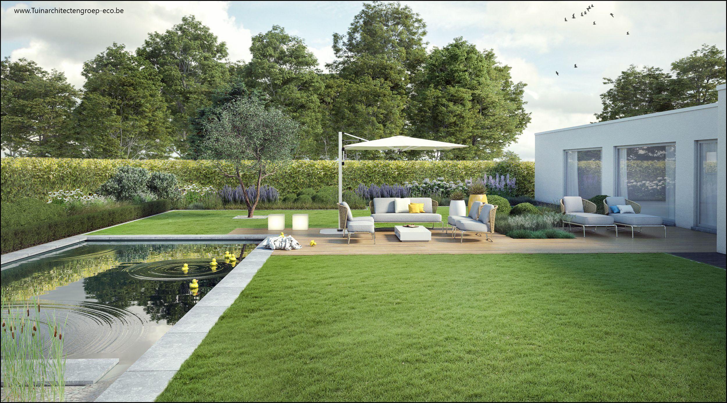 Moderne tuin met houten terras vlonder zwemvijver for 3d tuinarchitect