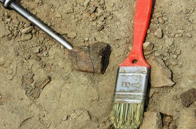""""""" Dinosaur fossils """" 28.feb.2013  古い写真をDVD→HDDに保存し直しています。2004年の化石発掘の時に掘り出した恐竜の化石!(私のお宝画像〜♪)"""