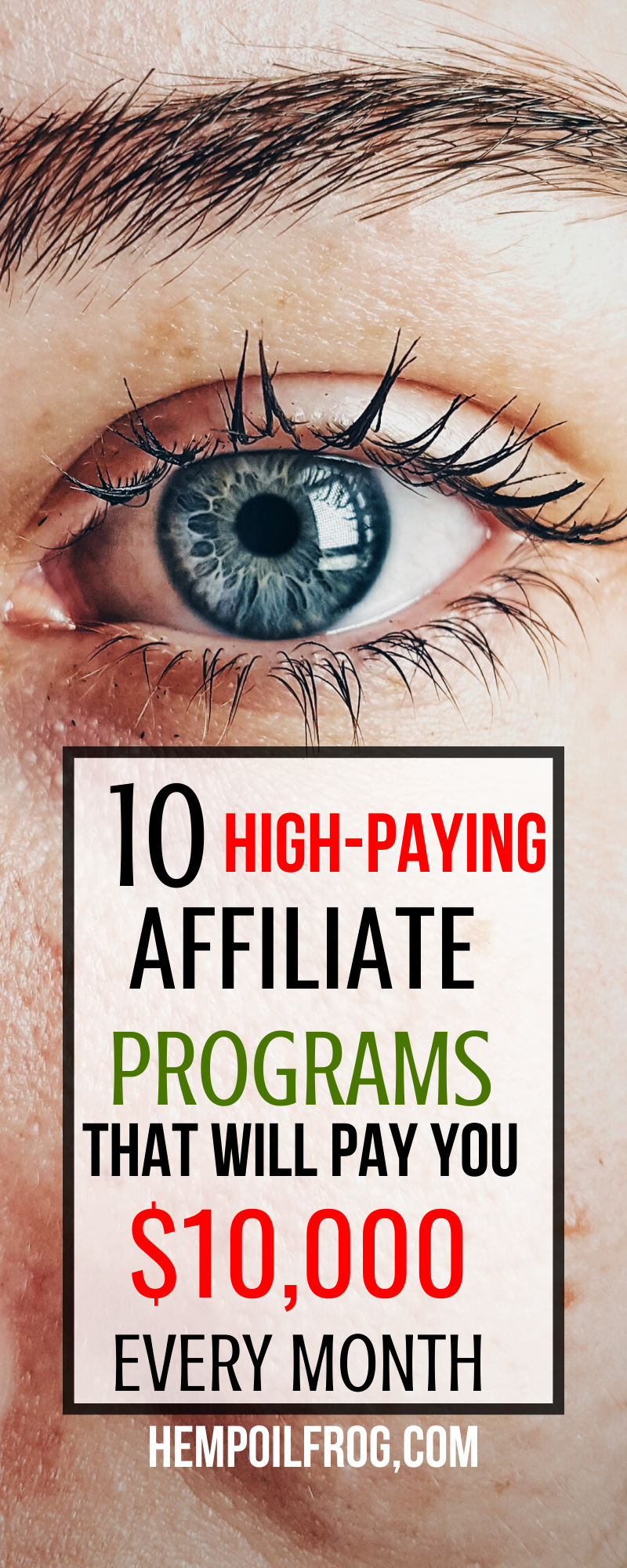 Top 10 Best Affiliate Programs to Join Today And Make