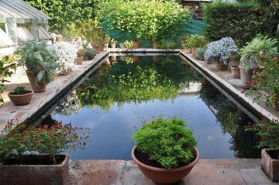 patio de la alberca Viana