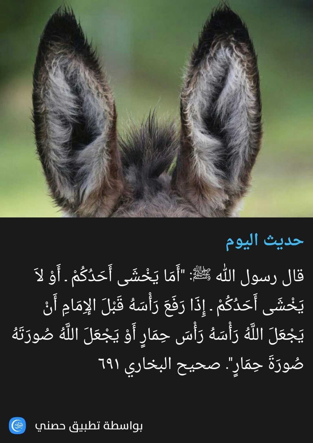 Pin By عبق الورد On أحاديث نبوية ٢ Islamic Quotes Quran Islamic Quotes Hadith