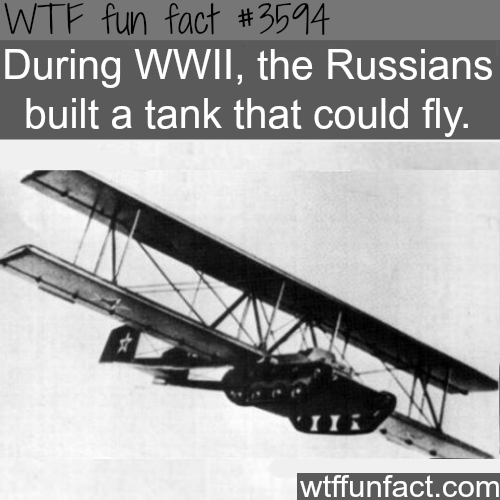 Crazy Facts About Russia WTF Fun Facts Fun Facts Pinterest - 10 interesting facts about russia