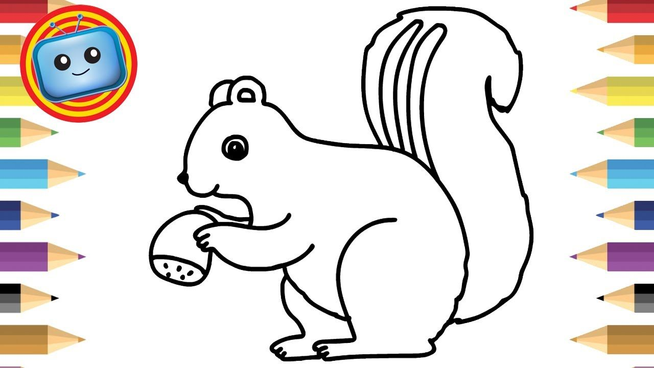 How to Draw Cute Squirrel Colouring Book Simple
